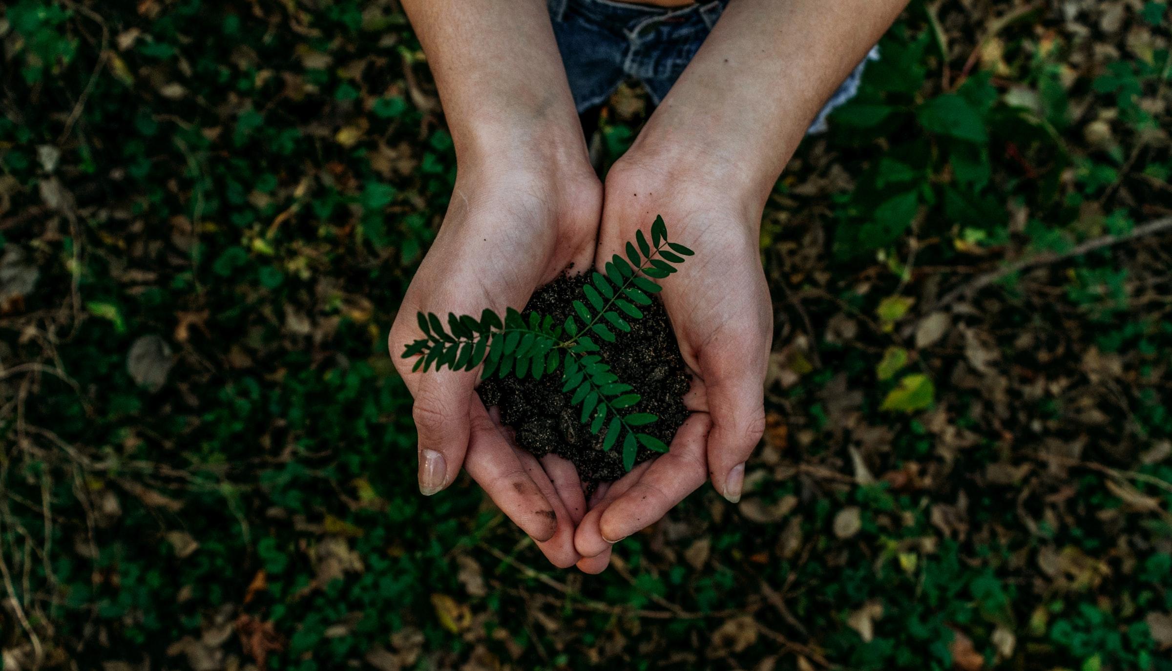 el problema de los RAEE para el medioambiente